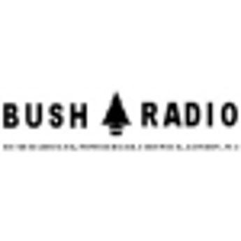 Picture for manufacturer Bush